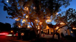 la-hm-chandelier-tree-20140712-001